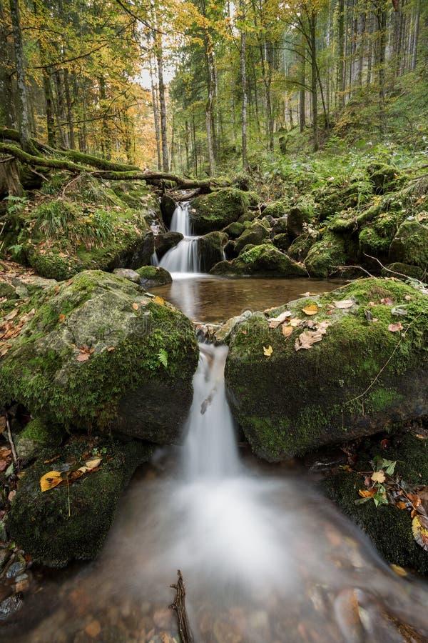 Pequeña cascada en bosque negro imagenes de archivo