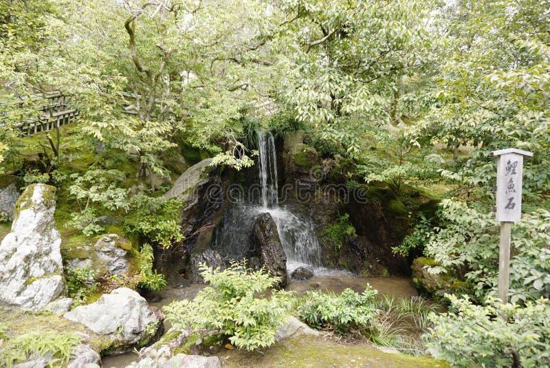 Pequeña cascada natural en jardín del zen fotos de archivo libres de regalías