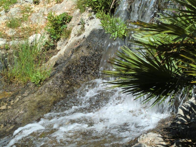 Pequeña cascada sobre rocas y plantas imágenes de archivo libres de regalías