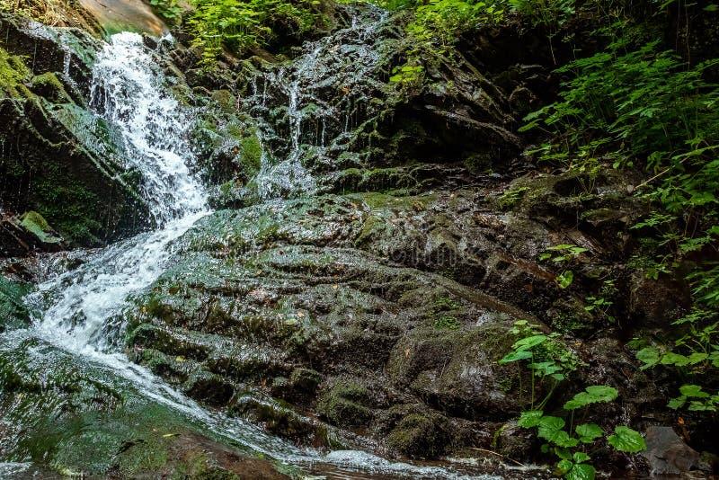 Pequeña cascada verde en las montañas de la cueva, cascadas del bosque en un río de la montaña El concepto de días de fiesta acti imagen de archivo