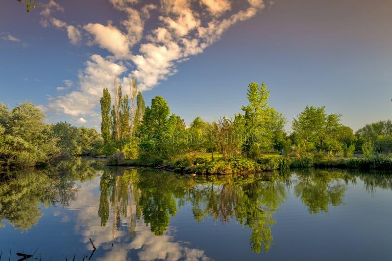 Pequeña charca en un parque de la ciudad con las nubes fotografía de archivo libre de regalías