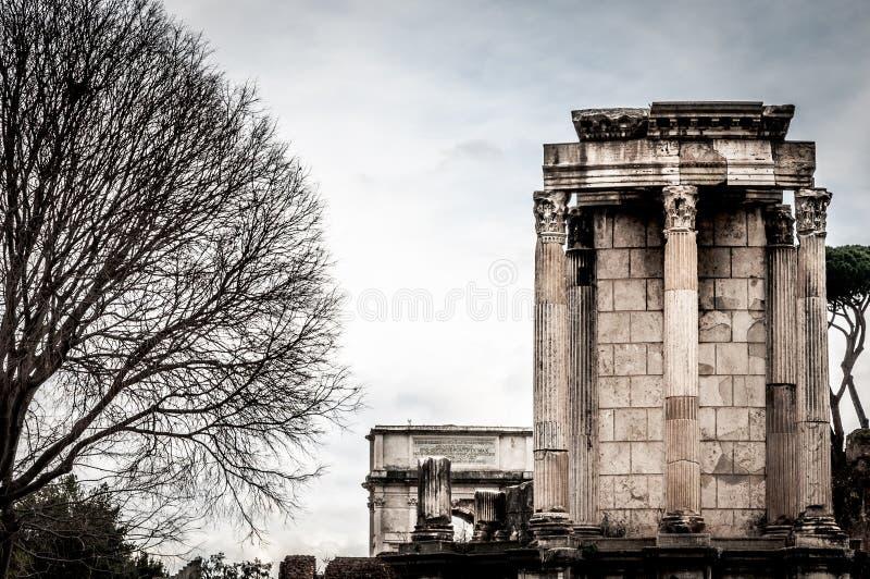 Pequeña columnata encendido con el árbol viejo grande en el cielo izquierdo y blanco o fotos de archivo libres de regalías