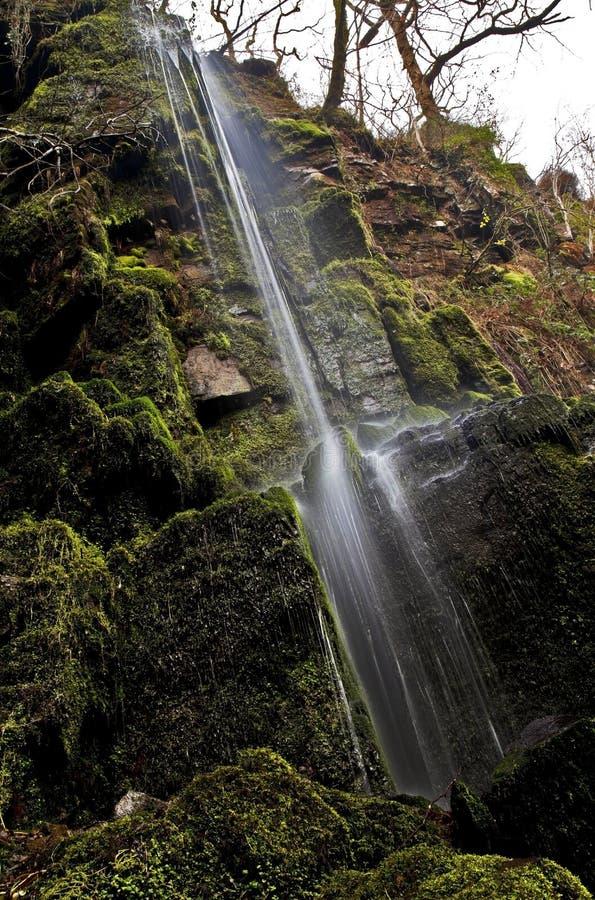 Pequeña corriente del agua que cae en la cascada de Melincourt fotografía de archivo