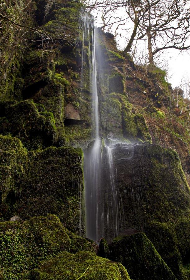 Pequeña corriente del agua que cae en la cascada de Melincourt imágenes de archivo libres de regalías
