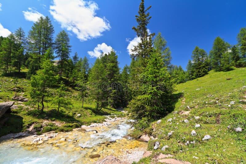 Download Pequeña Corriente En El Valle De Contrin Imagen de archivo - Imagen de alza, verano: 42433173