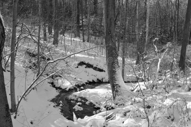 Pequeña corriente en nieve del invierno foto de archivo libre de regalías