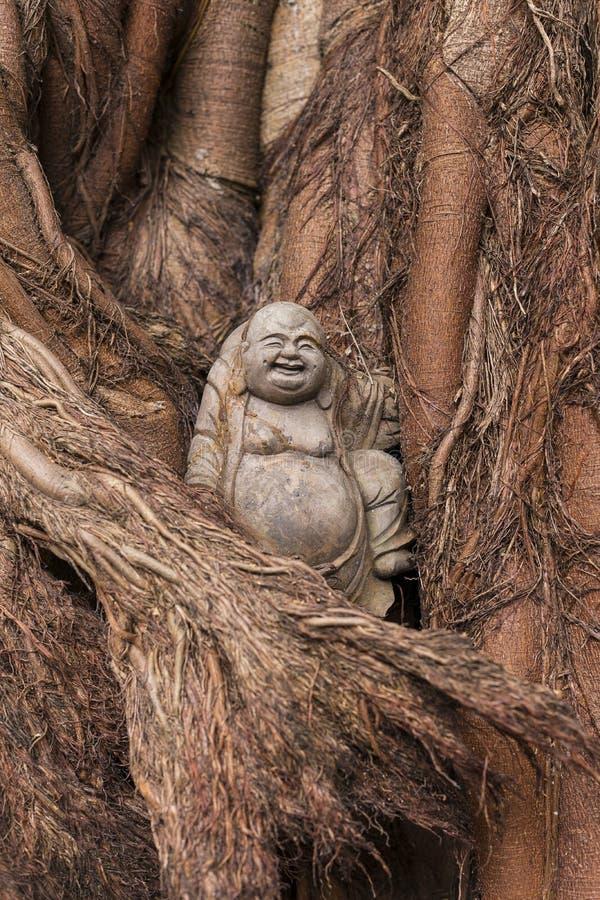Pequeña estatua sonriente de Buda fijada en baniano imágenes de archivo libres de regalías
