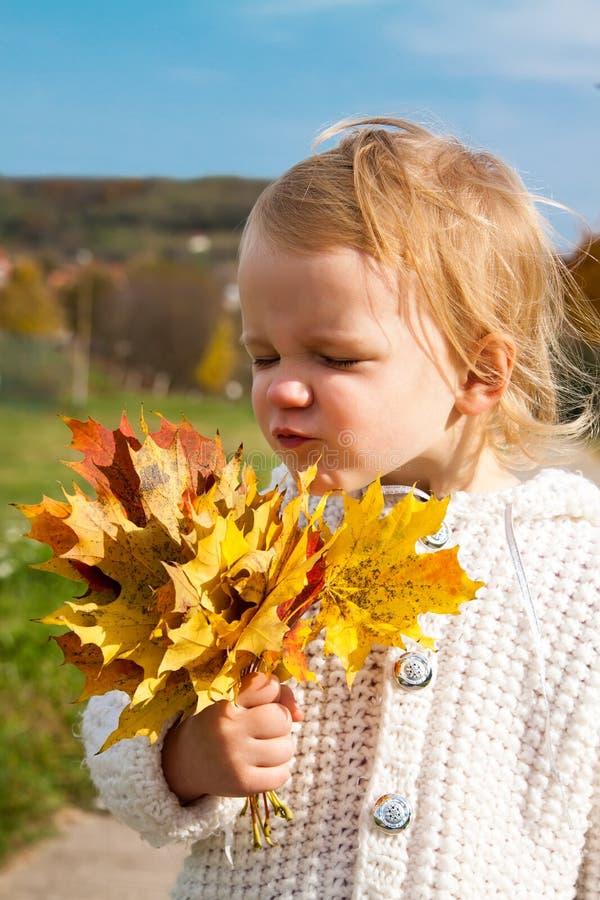 Pequeña muchacha alegre con las hojas de arce imagenes de archivo