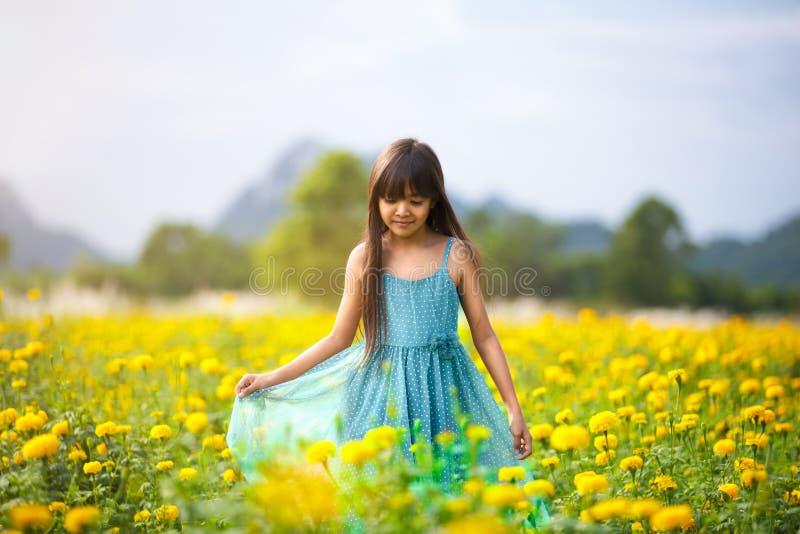 Pequeña muchacha asiática en campos de flor fotos de archivo