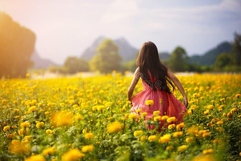 Pequeña muchacha asiática en campos de flor imagen de archivo libre de regalías