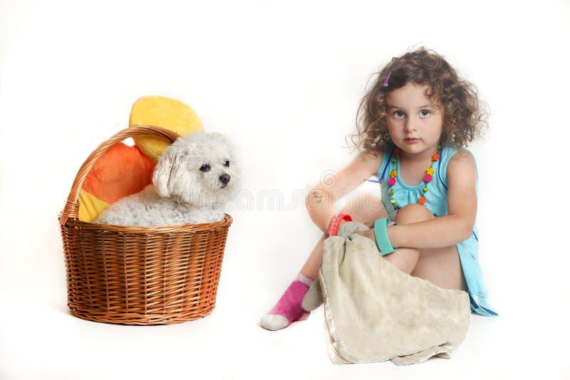 Pequeña muchacha con el perro boloñés en el fondo blanco foto de archivo libre de regalías