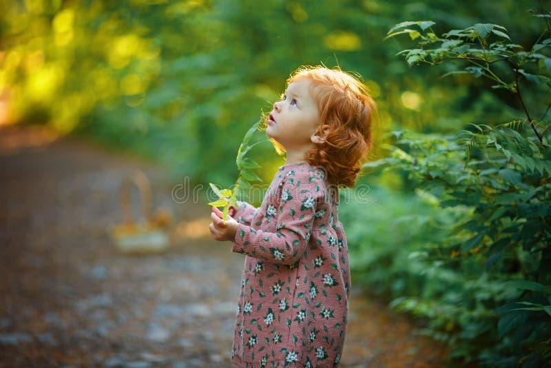Pequeña muchacha pelirroja hermosa en verano en la tenencia del bosque imagen de archivo