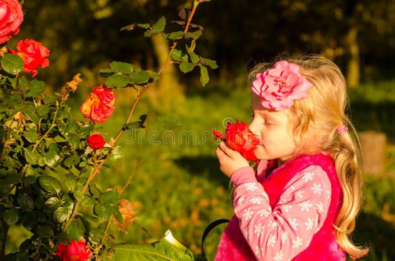Pequeña muchacha preciosa que huele la flor color de rosa foto de archivo libre de regalías