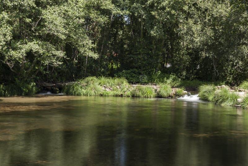 Pequeña presa en el medio del bosque con dos pequeñas cascadas foto de archivo libre de regalías