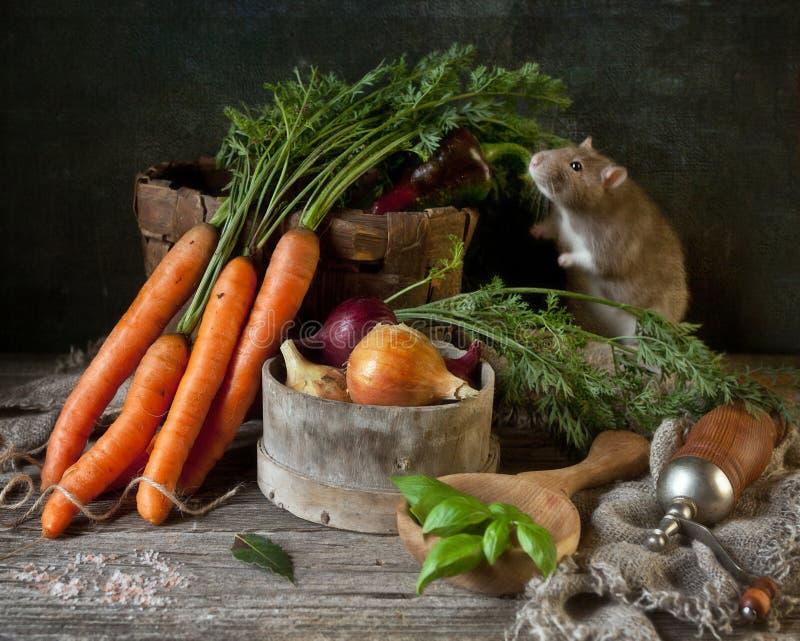 Pequeña rata gris linda en aún la composición de la vida en estilo del vintage con la zanahoria y verduras y condimentos frescos  foto de archivo