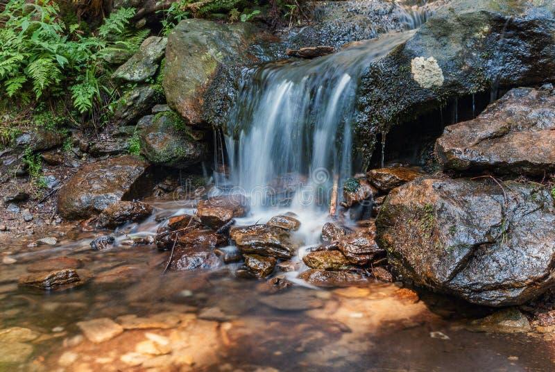 Pequeña roca de la naranja de la cascada del bosque foto de archivo