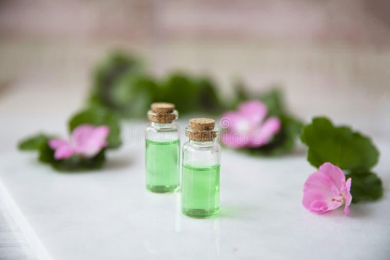 Pequeñas botellas con el extracto de la planta imagen de archivo