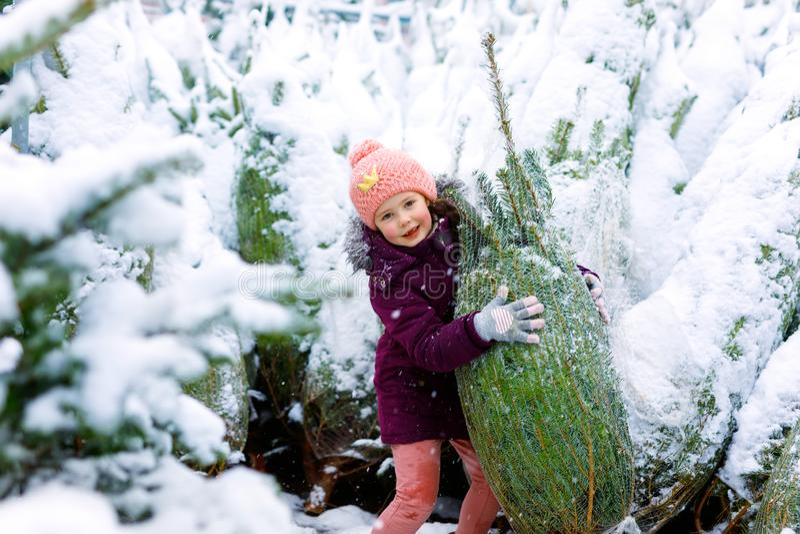 Pequeñas compras sonrientes lindas de la muchacha del niño en mercado del árbol de navidad El niño feliz en invierno viste llevar fotografía de archivo