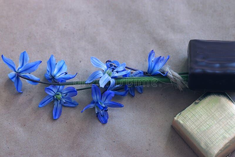 Pequeñas flores azules fotos de archivo libres de regalías