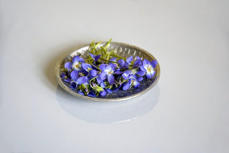 Pequeñas flores de la primavera del color azul en un platillo de plata foto de archivo libre de regalías
