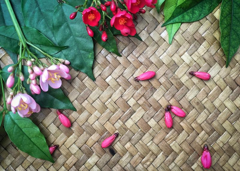 Pequeñas flores rojas y rosadas con las hojas verdes en el fondo de bambú de la armadura imagen de archivo libre de regalías