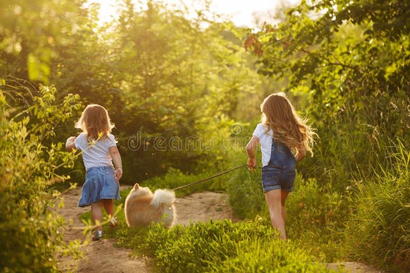 Pequeñas hermanas que caminan con el perro foto de archivo libre de regalías
