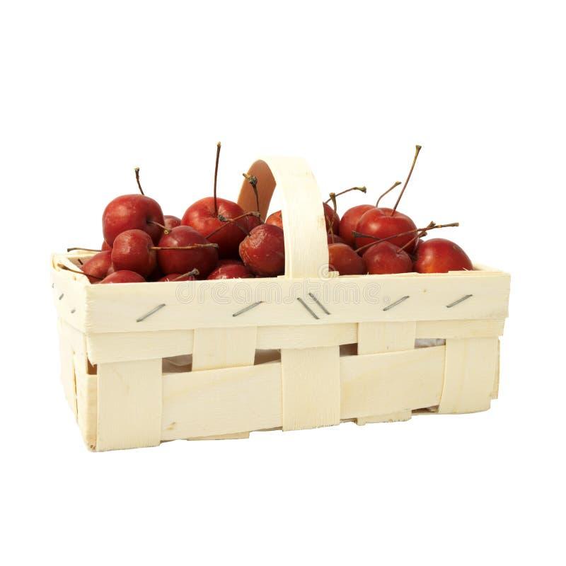 Pequeñas manzanas rojas en una cesta fotografía de archivo libre de regalías