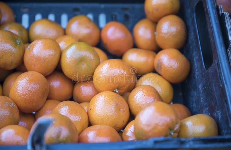 Pequeñas naranjas frescas en un cajón plástico foto de archivo