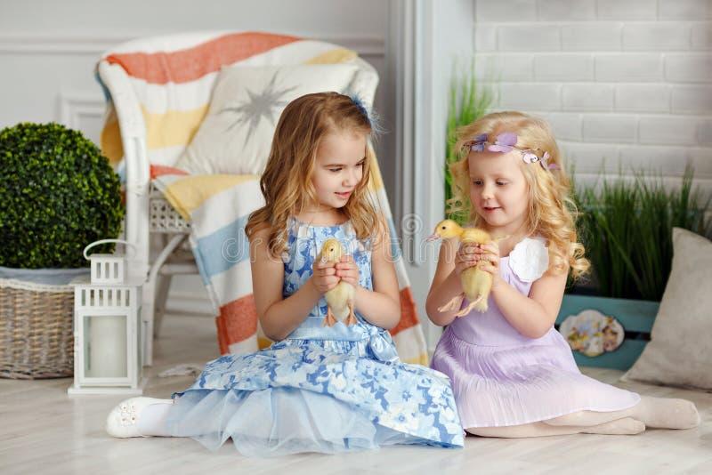 Pequeñas niñas hermosas que detienen a hermanas en las manos del du fotos de archivo