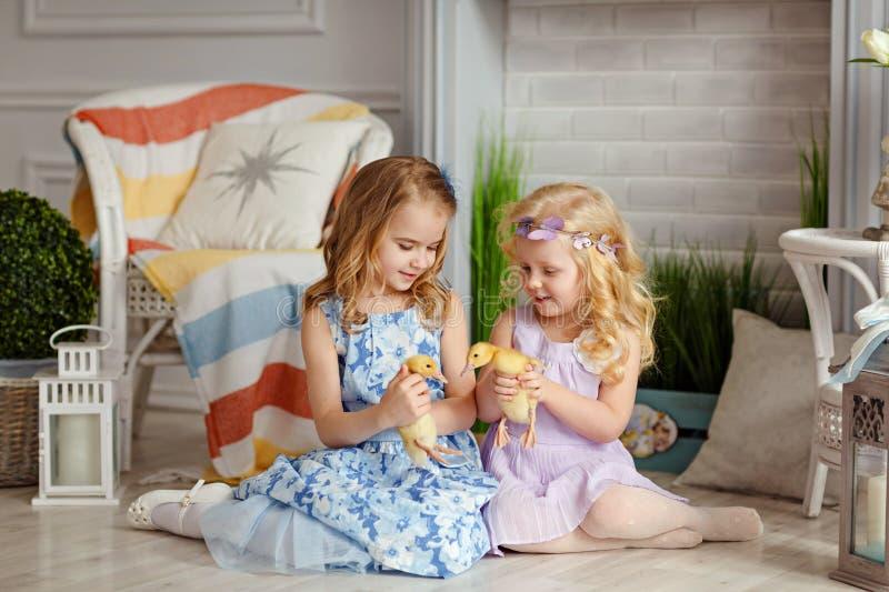 Pequeñas niñas hermosas que detienen a hermanas en las manos del du imagen de archivo libre de regalías