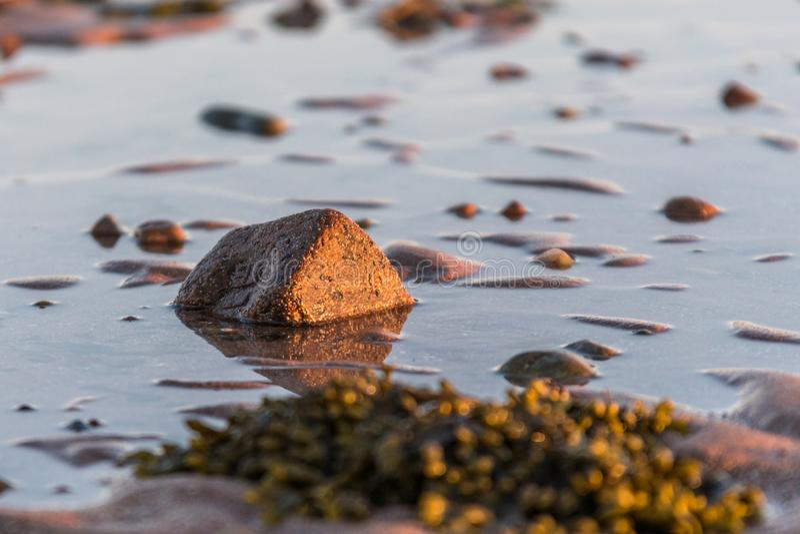 Pequeñas rocas dispersadas en cierre de la arena de la playa para arriba imagen de archivo