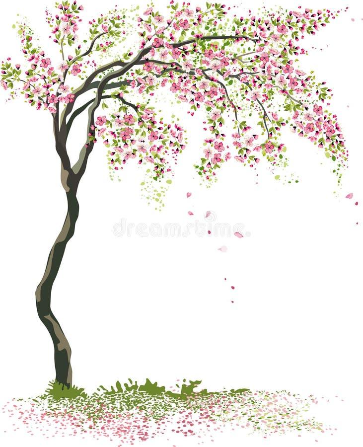 Pequeño árbol floreciente ilustración del vector