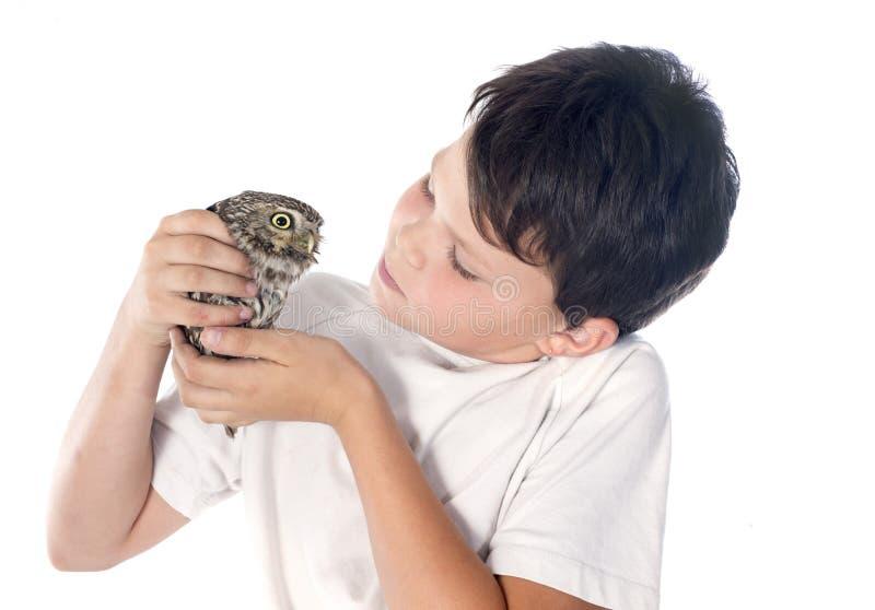 Download Pequeño búho y niño foto de archivo. Imagen de blanco - 42445604