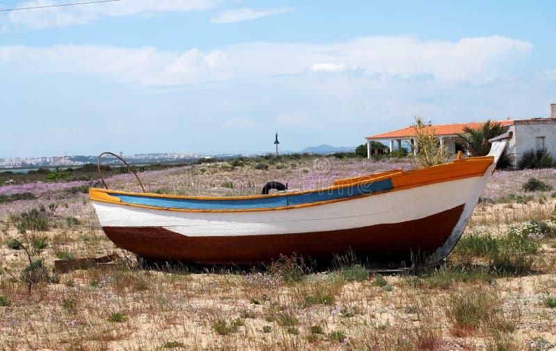 Pequeño barco de fila en tierra en Ilha DA Culatra Portugal imagen de archivo libre de regalías