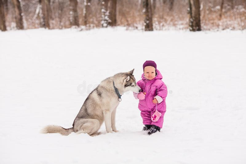 Pequeño bebé con el perro fornido imagen de archivo