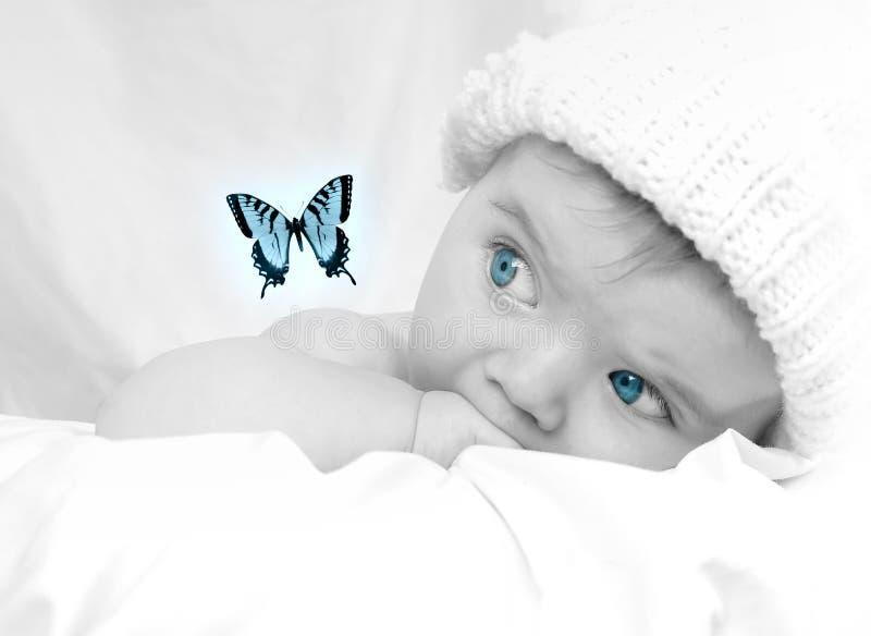 Pequeño bebé lindo que mira un sueño de la mariposa foto de archivo libre de regalías