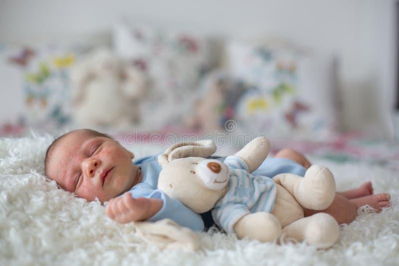 Pequeño bebé recién nacido que duerme, bebé con la erupción del scin imágenes de archivo libres de regalías
