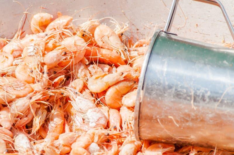 Pequeño camarón, taza del metal, comida de la calle foto de archivo libre de regalías