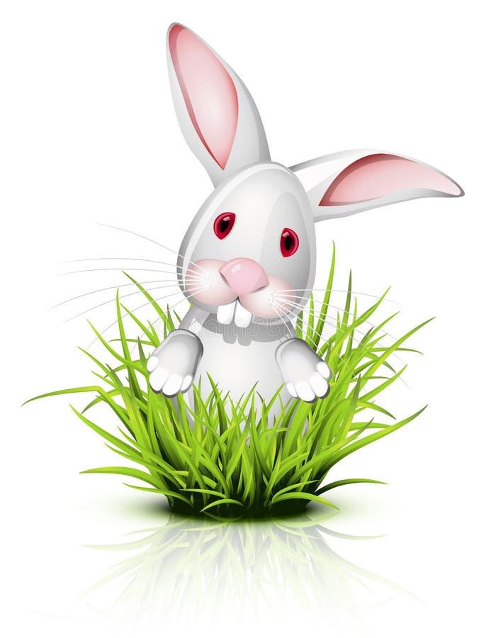 Pequeño conejo en hierba stock de ilustración