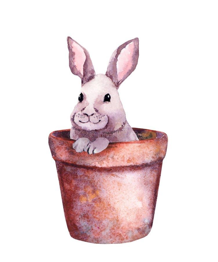Pequeño conejo lindo en una maceta Acuarela adorable con el conejito de pascua libre illustration