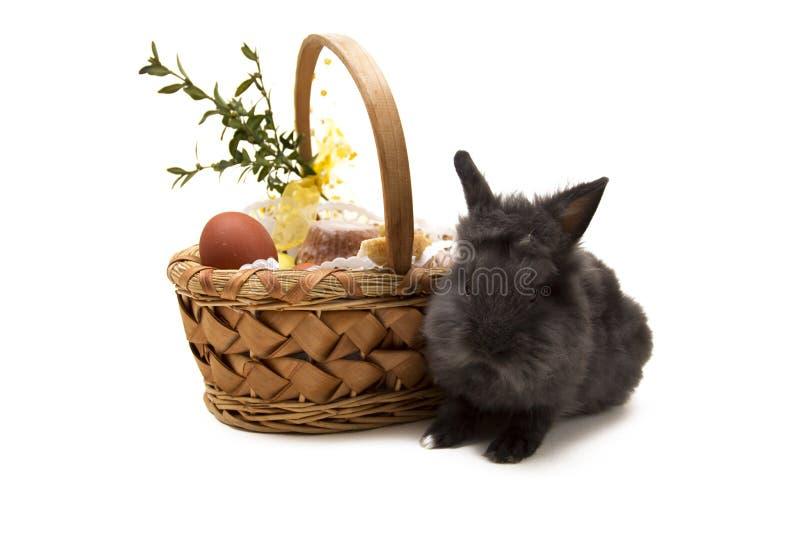 Pequeño conejo y cesta de pascua aislada en blanco fotografía de archivo