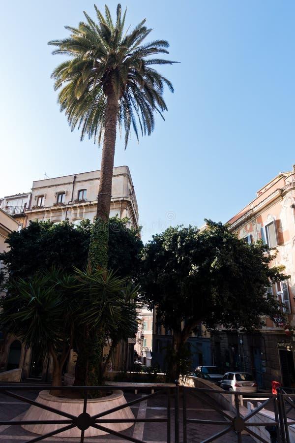 Pequeño cuadrado con las palmeras, calles de Cagliari céntricas, Cerdeña fotografía de archivo libre de regalías