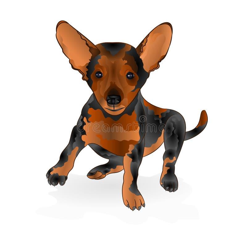 Pequeño ejemplo marrón feliz del vector del terrier del perrito editable libre illustration