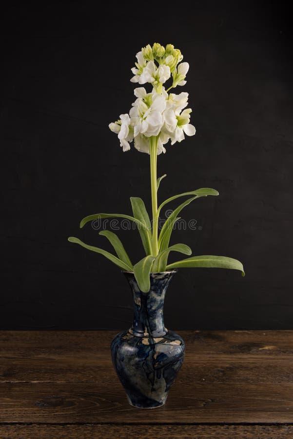 Pequeño florero de mármol con el manojo de flores blancas en negro fotografía de archivo libre de regalías