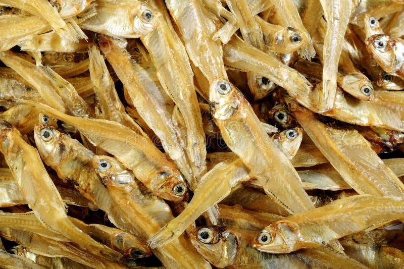 Pequeño fondo secado de los pescados foto de archivo