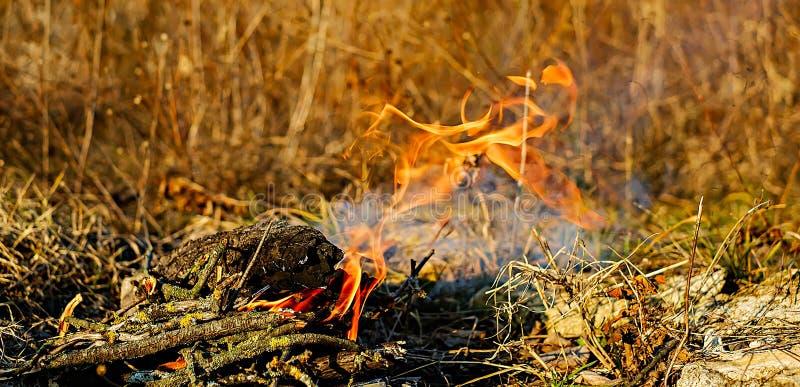 Pequeño fuego en naturaleza imágenes de archivo libres de regalías