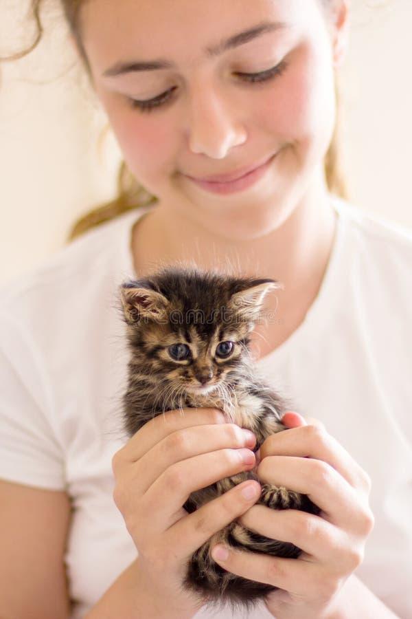 Pequeño gatito mismo del gato atigrado en las manos de la muchacha imagenes de archivo