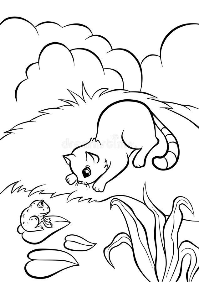Pequeño gato que se sienta en el banco de la charca y que mira la rana libre illustration