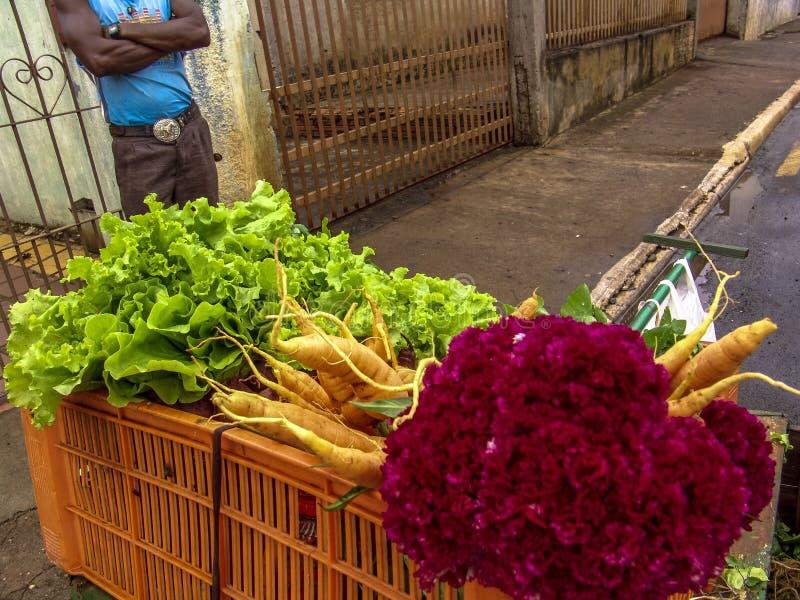 Pequeño granjero con venta de las verduras imágenes de archivo libres de regalías