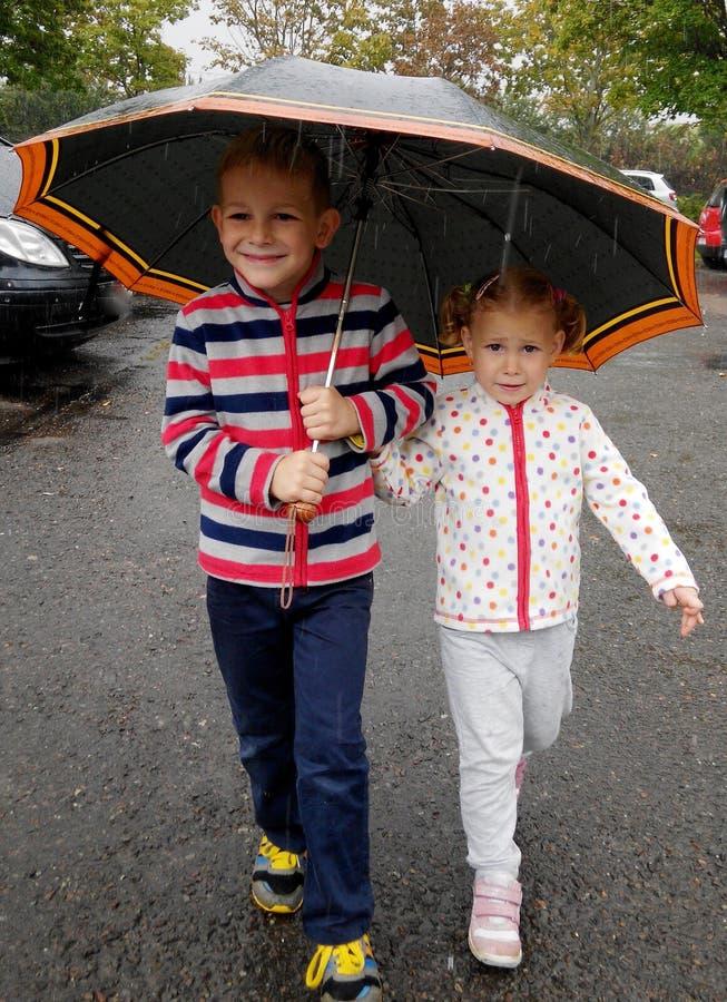 Pequeño hermano y hermana debajo del paraguas en lluvia fotos de archivo libres de regalías